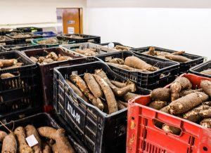 bancodealimentos foto edcarlos santana secomjp 300x218 - Em quatro meses, Prefeitura de João Pessoa distribui quase 300 toneladas de alimentos e mais de 200 mil refeições